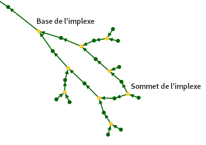 graphe_implexe.png