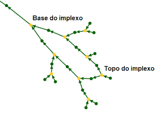 pt_graphe_implexe.png