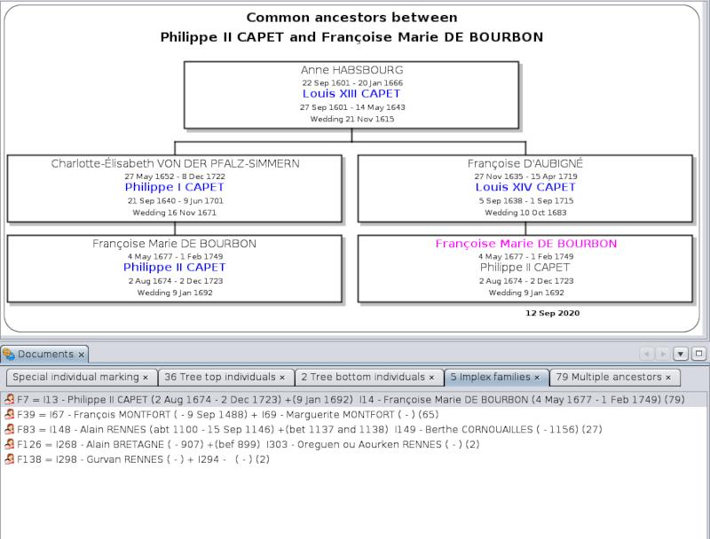 en-marking-individuals-ancestors.png