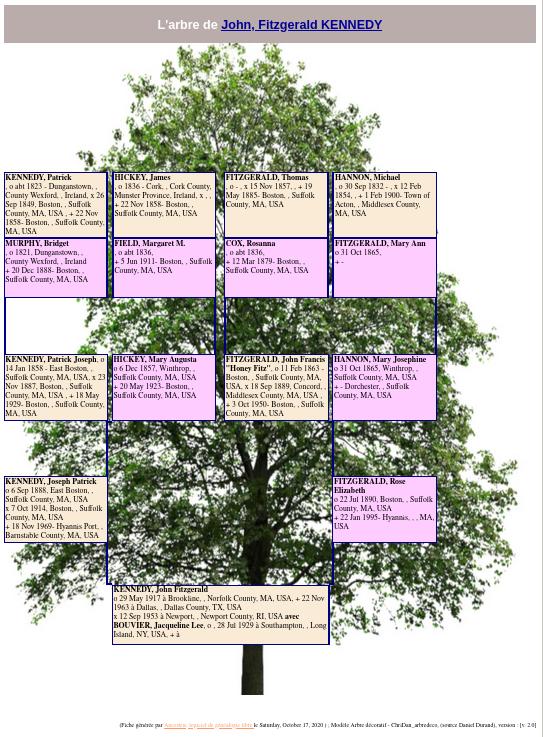 en-gedart-decorative-tree.png